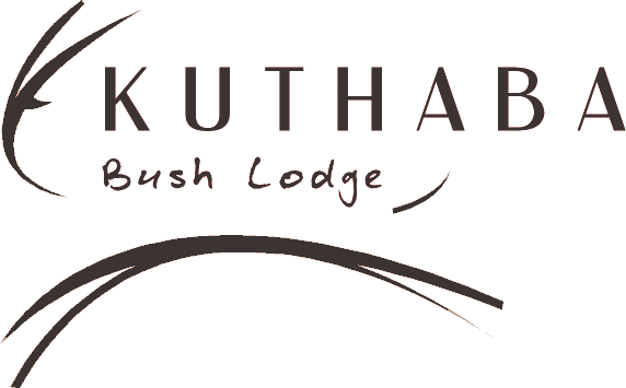 Kuthaba PNG Logo New Color