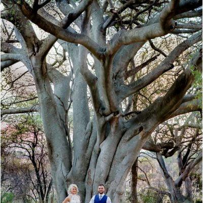Tree (20)